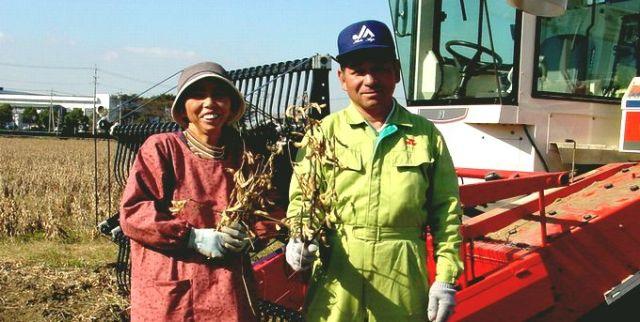 大豆生産者