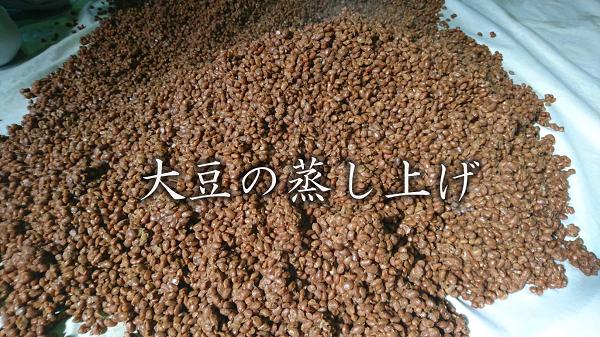 大豆の蒸し上げ