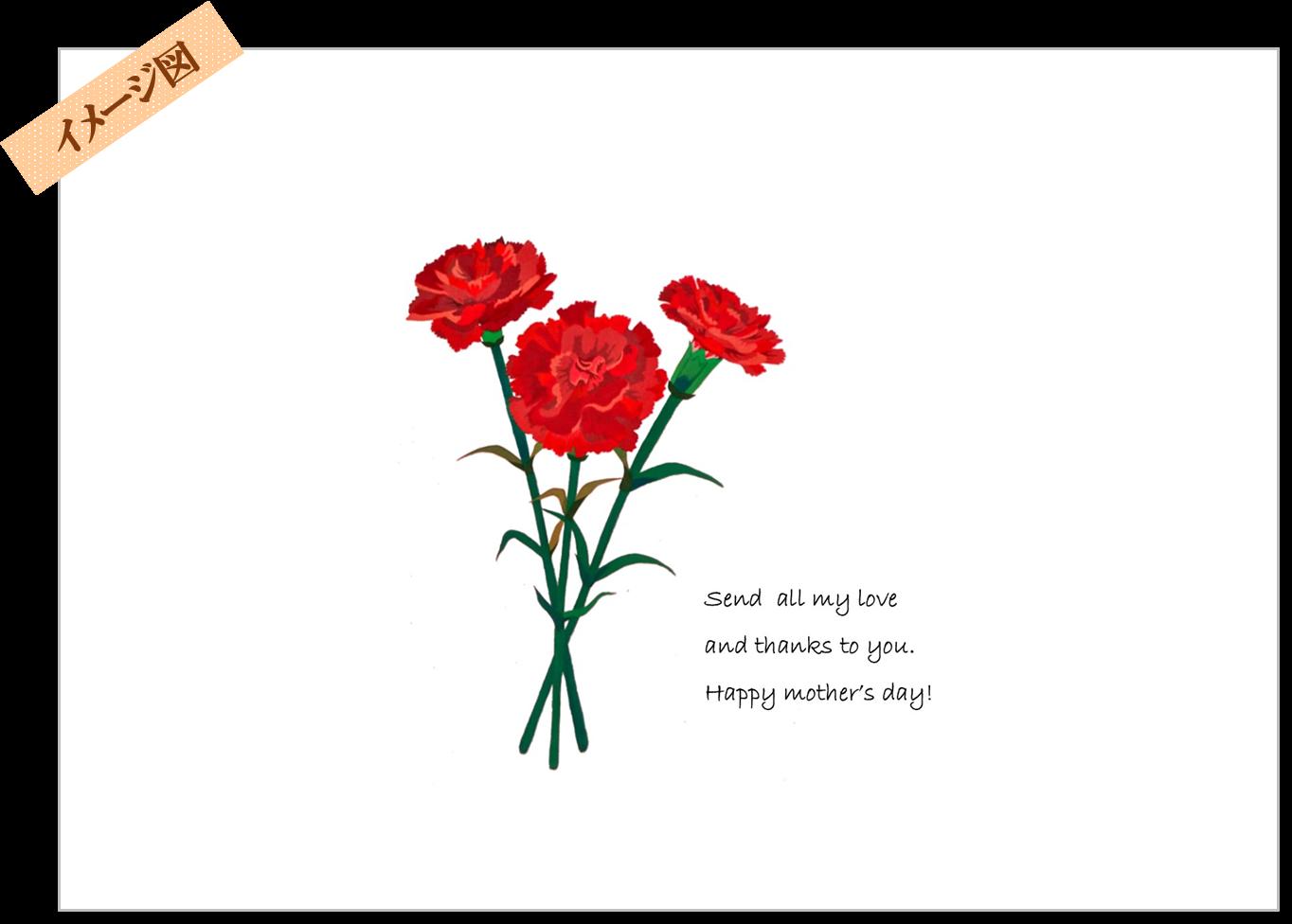 母の日熨斗イメージ図