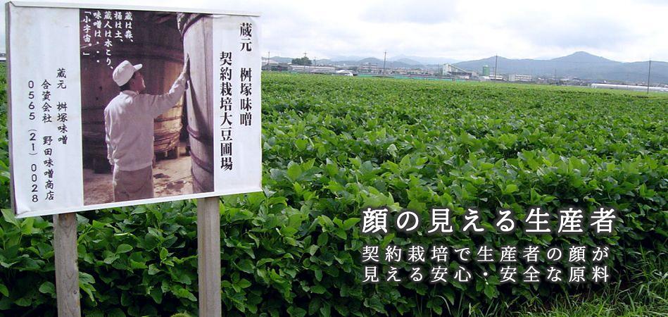 契約栽培の大豆